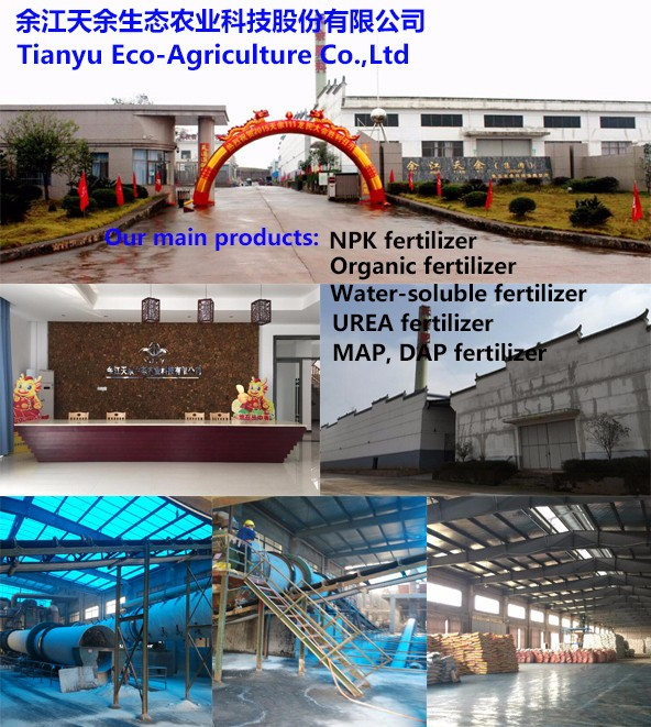 Hot sale factory direct price organic fertilizer 8-8-8 china for customer