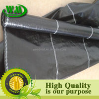 PP ground cover 1*100m agricultural plastic groun/agricultural ground cover/fabric landscapes weed