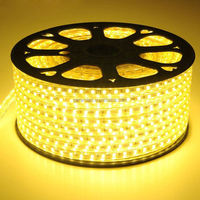 led strip light 5050 smd rgb led strip ws2801
