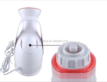 factory manufactured hot sale mini Facial Steamer With Ozone