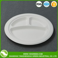compostable and biodegradable bamboo 9