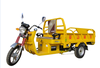 Chile Popular Heavy Duty electric cargo tricycle/electric goods carrier