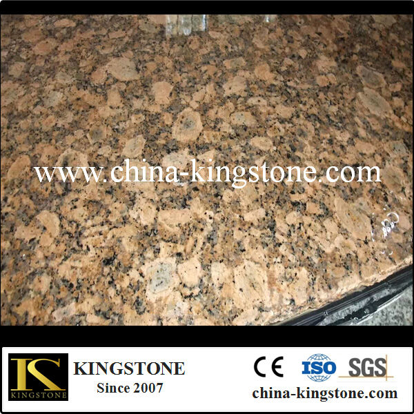 xiamen cheap Giallo Fiorito granite countertop slabs for kitchen