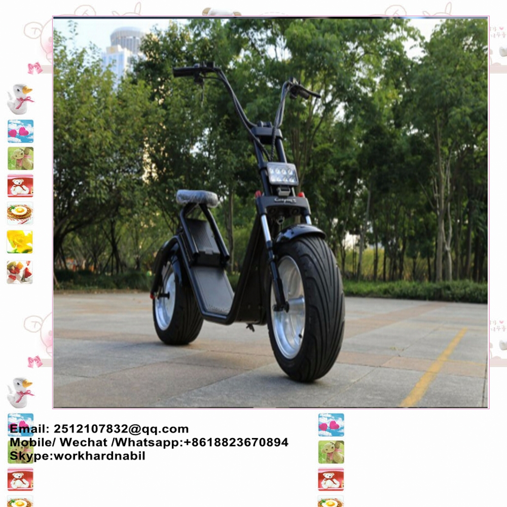 OEM 2000W City Coco 2 wheel electric standing scooter