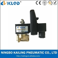 2W025-08 2 Way Gas Valve with 220V Timer