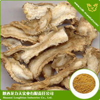 Largest Supplier Of Angelica Dahurica Root Extract Used For Irregular Menstruation