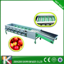 blueberry sorter/fruit potato strawberry sorting/ bilberry grading machine