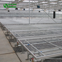 Commercial Grape Nursery Greenhouse Seeding Supplier