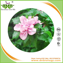 Roselle, hibiscus flower extract, dried roselle flower