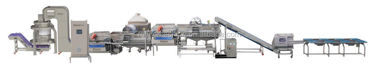 Hot Sale vegetable washing machine/Salad vegetable processing line for lettuce/potato/carrot/onion