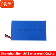 UN38.3 approved deep cycle lithium ion lifepo4 12v 24ah battery pack