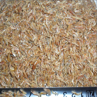Dried Sea Food Good Quality Dried Shrimp Shell With Head / Fish Food Prawns