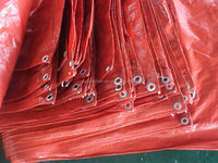 plastic laminate PE/PP/PVC tarpaulin sheet with all specification