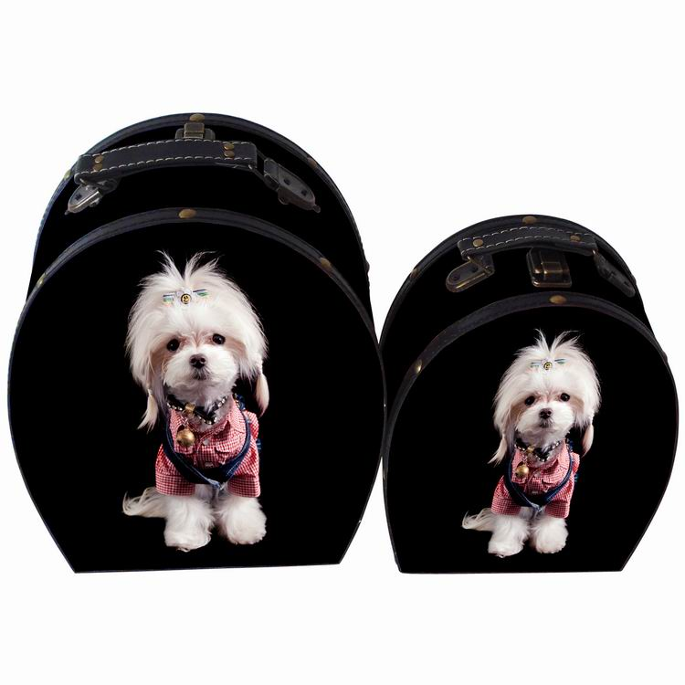 Black print cute dog suitcase style storage wooden toy box wholesale for