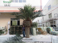 Artificial Canary date palm planter,imitation date palmtree,artificial landscape seaweed tree
