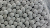 wholesale softair/Tactical BB Bullets Softair largest supplier