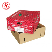 Hot Sale Cardboard Box For Fruit And Vegetable From Shanghai Packaging Factory