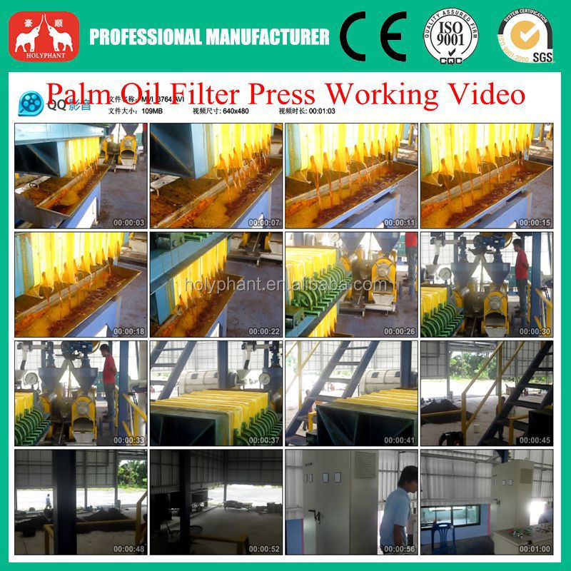 1T-20T/H Palm Oil Fruit Processing Equipment in Malaysia