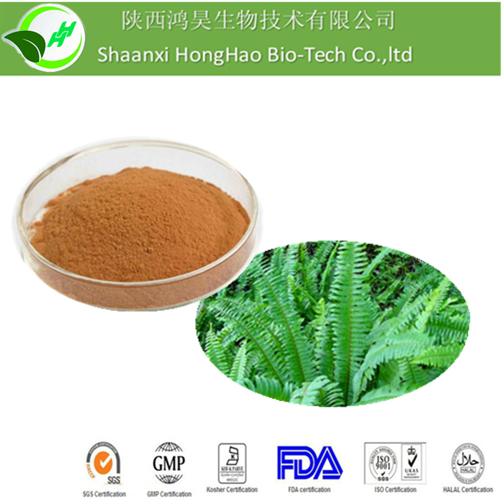 Factory Supply Herb Extract For Penis Enlargement From Organic Polypodium Vulgare Extract