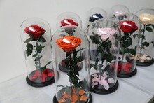 Wholesale House Plants Preserved Roses Indian Wedding Gifts for Guest