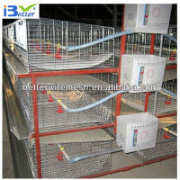 2013 hot-sell H chicken cage for sale