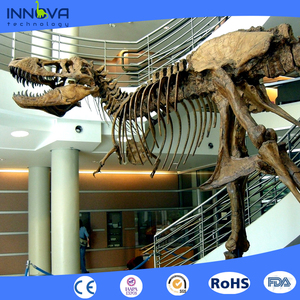 Innova- customized real size dinosaur skeleton replica model for sale