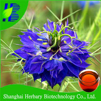 High quality black cumin seed oil