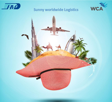DDP air cargo freight ship for online shopping alibaba UAE