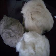Prezzo lana grezza di pecora