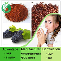 Grape seed extract grape seed extract 95 proanthocyanidins