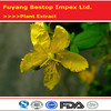 Guan Ye Lian Qiao High purity St.john S.wort P.e.with Best Price