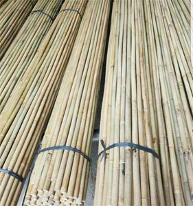 Pure Nature Bamboo Tonkin Cane For Fishing Rod Cane