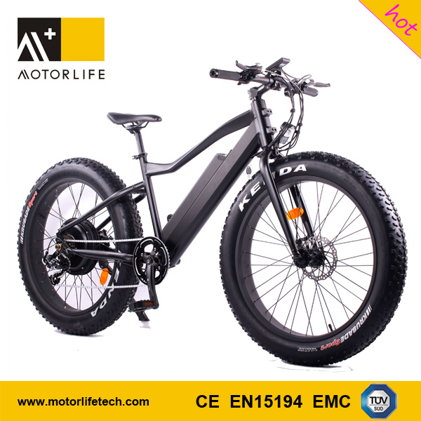 MOTORLIFE/OEM brand factory produced 2017 48v 1000w chinese new electric fat bike