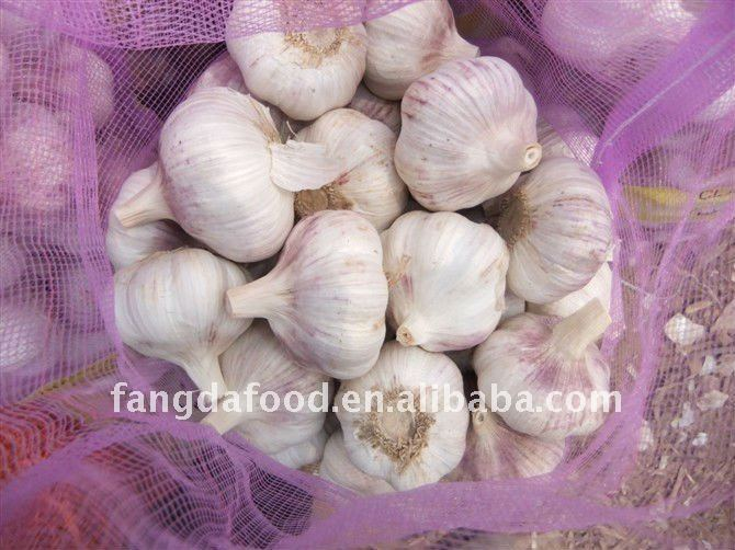 Fresh garlic white garlic hybrid garlic