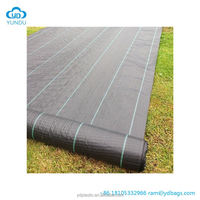 Agricultural Ground Cover Black Or Transparent Mulching Plastic Film For Agricultural And Horticultural Plantation