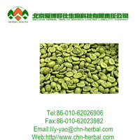 Hot Selling Organic Green Coffee Bean Extract with GCA 800 mg 50% Chlorogenic Acid