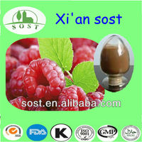 GMP production factory supply pure natural raspberry fruit extract