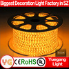 CE ROHS certification rgb continuous length flexible led light strip 60 leds/m led flexible neon strip light outdoor use IP65