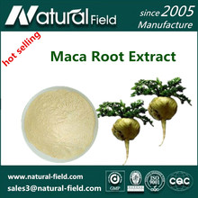 Organic Maca Root Extract Powder with High Quality