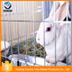 Hot sale 9 nest 3 layer male rabbit cage /automatic rabbit hutch