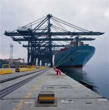 FCL/LCL,Iinternational Shipping Company shanghai fcl&lcl warehousing services for honduras