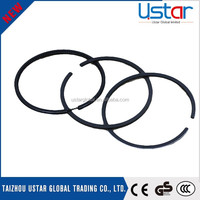 DC 12V water mist low noise cast iron piston ring