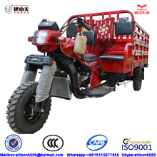 promotional Chinese cargo tricycle,motorized gas powered pedal cargo tricycle,van cargo tricycle