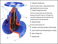 Wedge gate valve,long rising stem gate valve pn16 pn25