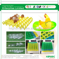 Egg cartons and trays
