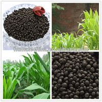 Blackgold Humate Composition of Chemical Granular Fertilizer