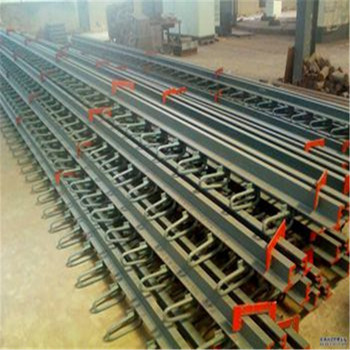 Durable Steel Modular Bridge Expansion Joint For Bridge Construction