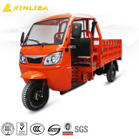 chongqing made 300cc three wheel rickshaw -adult double seat tricycle for sale