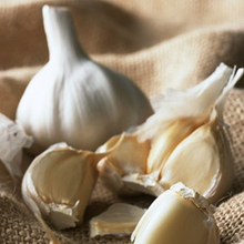 Superhot Wholesale Fresh Single Clove Garlic