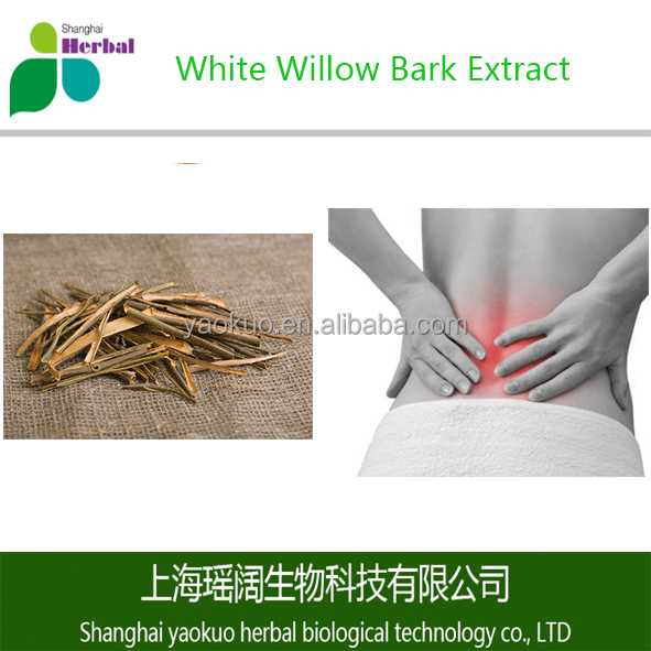 Natural Salix Alba Extract/White Willow Bark Extract Powder